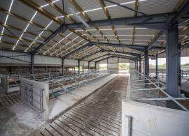 Agricultural Roofing - Grant Approved Farm Shed Sheeting